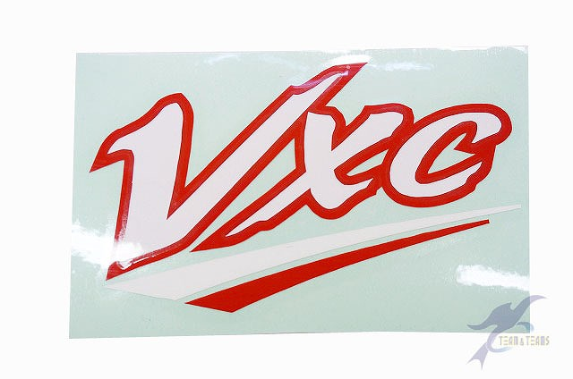 Virtualex 様(ヘルメットマーク)